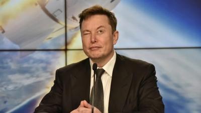 Elon Musk: «Καλωδιώσαμε» έναν πίθηκο με τσιπ και παίζει video games με τον εγκέφαλο του!