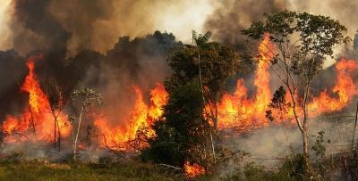 Η Βραζιλία απορρίπτει την οικονομική βοήθεια για τον Αμαζόνιο και ειρωνεύεται τον Macron