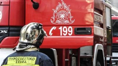 Πυροσβεστική: Συλλήψεις σε Λιβαδειά, Μυτιλήνη και Αττική για εμπρησμό