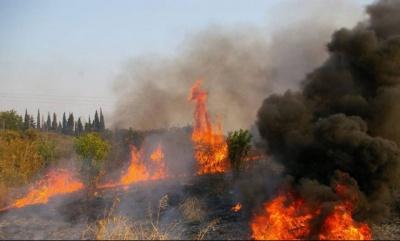 Σε ύφεση βρίσκονται οι πυρκαγιές σε Κέρκυρα – Ιεράπετρα