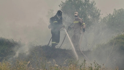 Φωτιά στη Θεσπρωτία: Πέρασε σε ελληνικό έδαφος η πυρκαγιά από την Αλβανία