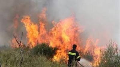 Μεγάλη φωτιά σε δασική έκταση στη Σάμο