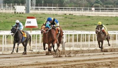 Markopoulo Park: Σημαντικά κέρδη για 15 νικητές του ΣΚΟΡ 6 στην πρώτη ιπποδρομιακή συγκέντρωση της χρονιάς