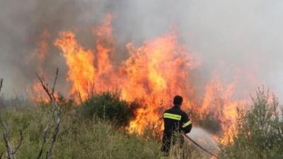 Υπό μερικό έλεγχο η πυρκαγιά στη Σπάρτη - Άμεση η κινητοποίηση της Πυροσβεστικής