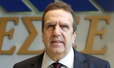 Καρανίκας (ΕΣΕΕ): Η φορολόγηση των επιχειρήσεων πρέπει να προσαρμοσθεί άμεσα στα δεδομένα της πανδημίας