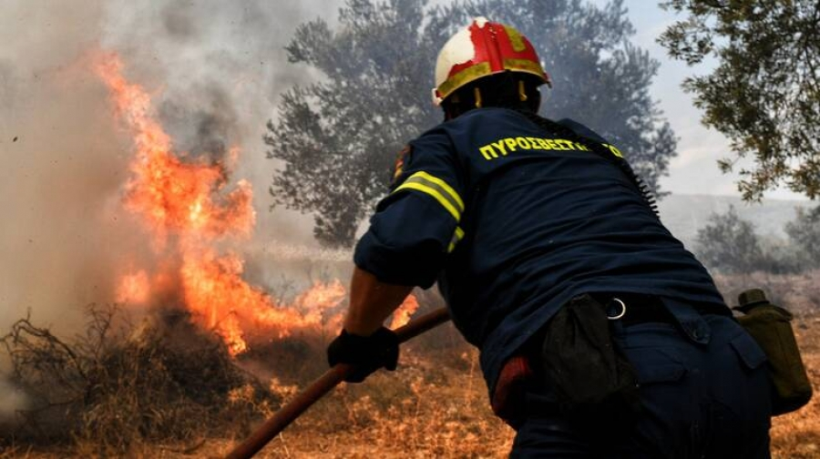Υπό έλεγχο η δασική πυρκαγιά στον Κάλαμο Ωροπού