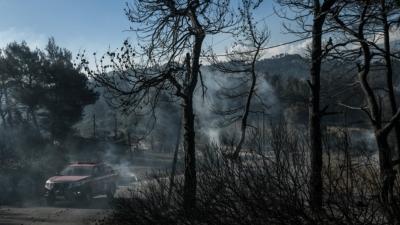 Σε ύφεση η πυρκαγιά στα Γεράνεια Όρη -   Στάχτη πάνω από 71.000 στρέμματα - Οι παρεμβάσεις στήριξης των πυρόπληκτων