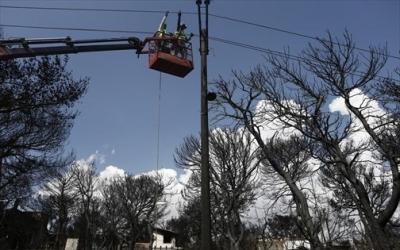 Αγώνας δρόμου για να ηλεκτροδοτηθούν 10.000 νοικοκυριά – ΚΕΔΕ: Δεν είναι δουλειά των δήμων να κόβουν δέντρα