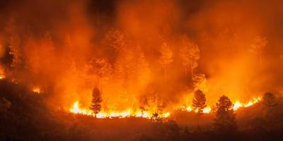Η G7 αποδεσμεύει 20 εκατ. δολάρια για τις καταστροφικές πυρκαγιές στον Αμαζόνιο