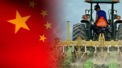 Γιατί η επιβολή δασμών στην αμερικανική σόγια από την Κίνα θα οδηγήσει σε χάος