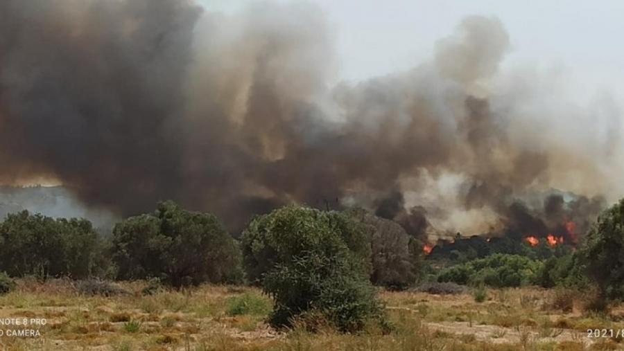 ΓΓΠΠ: Πολύ υψηλός κίνδυνος πυρκαγιάς την Τρίτη 3/8