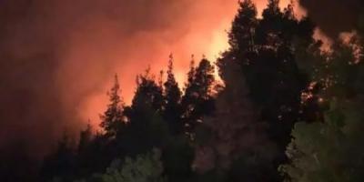 Υπό μερικό έλεγχο η πυρκαγιά στη Χαλκιδική – Παραμένουν στο σημείο οι πυροσβεστικές δυνάμεις
