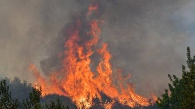 Eκτός ελέγχου μεγάλη φωτιά στην Πάτρα - Στις φλόγες παραδόθηκαν σπίτια, εκκενώθηκε το Σούλι