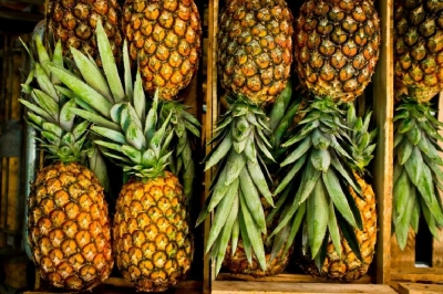 Έκρυψαν 2 τόνους κοκαΐνης μέσα σε... ανανάδες με προορισμό το Βέλγιο