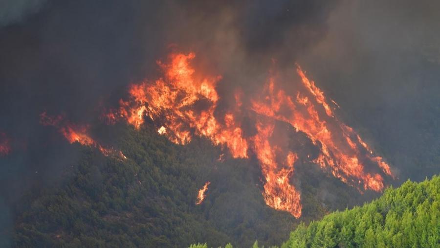 Φωτιές στη Μεσσηνία: Διευρύνεται το πύρινο μέτωπο σε Μουζάκι και Άνθεια