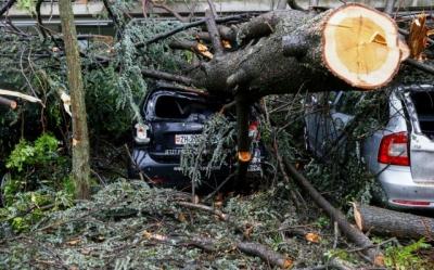 Ελβετία: Σφοδρές βροχοπτώσεις στη Ζυρίχη – Πλημμύρες, πτώσεις δέντρων και χάος στις μεταφορές
