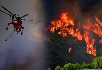 Χαρδαλιάς: Επτά πυρκαγιές στην Ηλεία, 118 πύρινες εστίες στη χώρα σε ένα 24ωρο – Μάχη να μην περάσει η φωτιά στην Αρχαία Ολυμπία