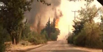 Αστεροσκοπείο Αθηνών: Οι  μετεωρολογικές συνθήκες έθεσαν εκτός ελέγχου τη φωτιά στη Βαρυμπόμπη - Δεν αναμένεται βελτίωση