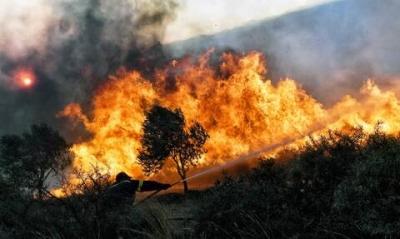 Σε ύφεση ο πύρινος εφιάλτης σε Βίλια και Κάρυστο - Εκκενώσεις οικισμών, κάηκαν σπίτια