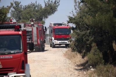 Πρόεδρος Πανελλήνιας Ομοσπονδίας Πυροσβεστών: Διπλασιάζονται τα κρούσματα κορωνοϊού στους πυροσβέστες