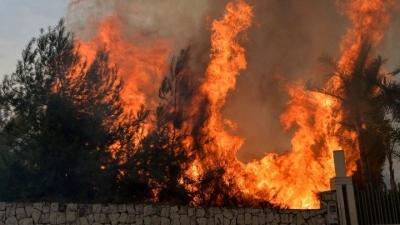 Ιταλία: Από την αρχή του χρόνου κάηκαν 1.580.000 στρέμματα δασικών εκτάσεων στη χώρα