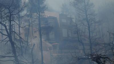 Πυρκαγιά σε Σταμάτα, Ροδόπολη Αττικής - Καίγονται σπίτια - Εκκενώσεις σε Γαλήνη, Διόνυσο - Ανεξέλεγκτη η κατάσταση