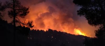 Πύρινος όλεθρος στην Εύβοια -  Έφτασαν στα Βασιλικά οι φλόγες  - Ανησυχία και για τη μεγάλη φωτιά στην Ηλεία