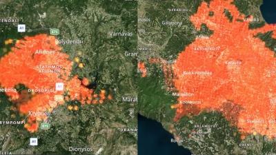 Εθνική καταστροφή, κρατική αποτυχία – Τα δάση που κάηκαν στις πυρκαγιές το 2021 είναι 1,8 φορές της περιόδου 2008-2020