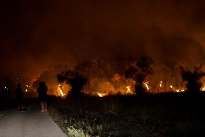 Σκληρή μάχη της Πυροσβεστικής με αναζωπυρώσεις σε Γορτυνία και Αρχαία Ολυμπία