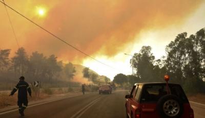 Δήμαρχος Αιγιάλειας: Σε χαράδρα το κύριο μέτωπο της φωτιάς στην Ζήρια – Δεν απειλούνται κατοικημένες περιοχές