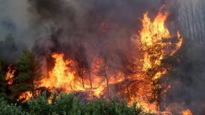 Ηλεία: Σε δύο μέτωπα η μάχη με τις φλόγες, αγωνία για την Αρχαία Ολυμπία – Εύβοια: Μπαράζ εκκενώσεων, σε πύρινο κλοιό δύο χωριά