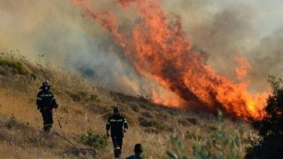 Φωτιά μαίνεται στο Δίστομο Βοιωτίας - Έχουν σπεύσει ισχυρές πυροσβεστικές δυνάμεις