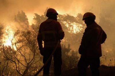 Πύρινος εφιάλτης στη Λατινική Αμερική – Πυρκαγιές σε Βολιβία και Παραγουάη