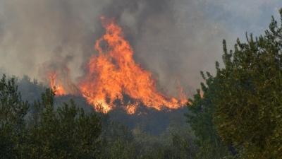 Είκοσι επτά δασικές πυρκαγιές το τελευταίο 24ωρο σε όλη την Ελλάδα