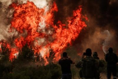 Ανεξέλεγκτη η φωτιά στη Βαρυμπόμπη - Εκκενώθηκαν Ιπποκράτειος Πολιτεία, Δροσοπηγή, Αφίδνες και Κοκκινόβραχος