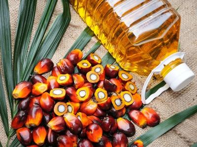 Η εκτόξευση των τιμών του φοινικέλαιου σε επίπεδα - ρεκόρ απειλεί τις αγορές
