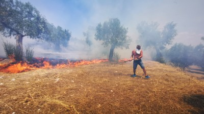 Φωτιά σε δασική έκταση στην Κάντια Ναυπλίου - Επιχειρούν 30 πυροσβέστες και 1 ελικόπτερο