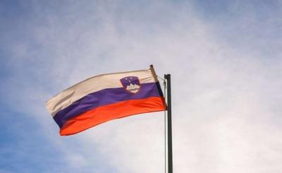 Σλοβενία: Στα 15,2 δισ. ευρώ οι άμεσες ξένες επενδύσεις το 2018