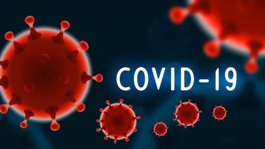 Ένας χρόνος με COVID-19: Πάθαμε αλλά μάθαμε