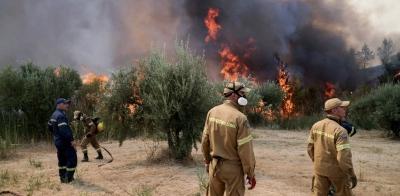 Φωτιά στην Ηλεία: Καίγονται σπίτια σε δύο χωριά, 150 άτομα εγκλωβισμένα - Εντοπίστηκε ύποπτος για εμπρησμό