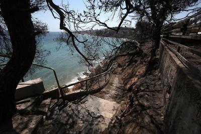 ΕΜΠ: Οι έξι περιοχές της Αττικής που κινδυνεύουν από μια πύρινη καταστροφή παρόμοια με αυτή στο Μάτι