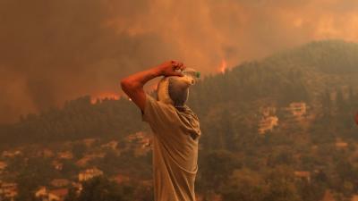 Πρωτοφανής καταστροφή, κάηκαν πάνω από 1 εκατ. στρέμματα - Νέα φωτιά σε δασική έκταση στην Εύβοια