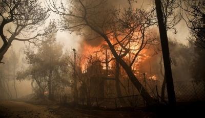 Φονικές πυρκαγιές στην Αττική: Στους 94 οι τραυματίες εκ των οποίων οι 23 είναι παιδιά
