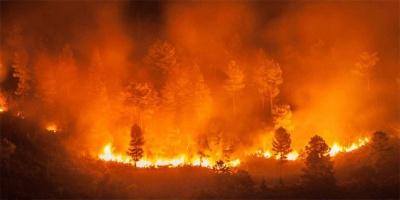 Βραζιλία: Προφυλακίστηκαν 4 εθελοντές πυροσβέστες για πυρκαγιές στον Αμαζόνιο