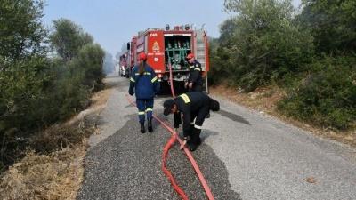 Υπό μερικό έλεγχο οι πυρκαγιές σε Τιθορέα Φθιώτιδας και Ηλεία -  36 φωτιές σε ολόκληρη τη χώρα