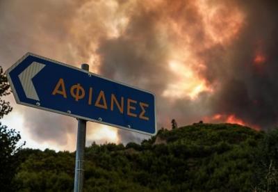 Πυρκαγιά στην Βόρεια Αττική: Η φωτιά πέρασε την Εθνική Οδό στο ύψος των διοδίων των Αφιδνών