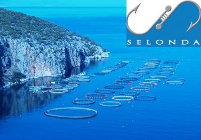Σελόντα: Στο 97,33% το ποσοστό της Andromeda Seafood