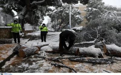 ΔΕΔΔΗΕ: Παραμένουν χωρίς ηλεκτροδότηση 4.000 νοικοκυριά - Αποκαθίστανται οι ζημίες
