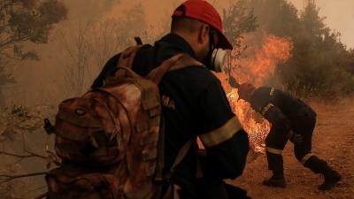 Πυρκαγιά στο Δίστομο: Μάχη να ελέγξουν τις φλόγες