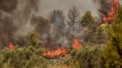 Μεγάλη φωτιά στην Κόρινθο - Μήνυμα από το 112